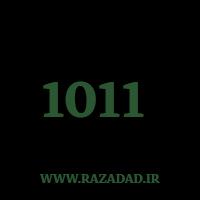 1011 راز عدد معنا و مفهوم اعداد
