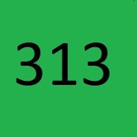313 راز عدد معنا