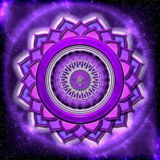 Code 50010 دانلود 6 ساعت موزیک یوگا چاکرای تاج Crown Chakra