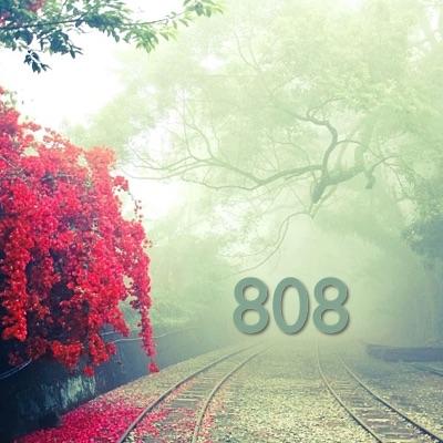 راز عدد 808 فال معنی و مفهوم فلسفه نمادگرایی اعداد تکرار شونده -